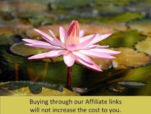 water-lily Affiliate notice 1